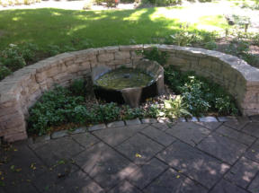 Bubbling water feature and shade loving perennials